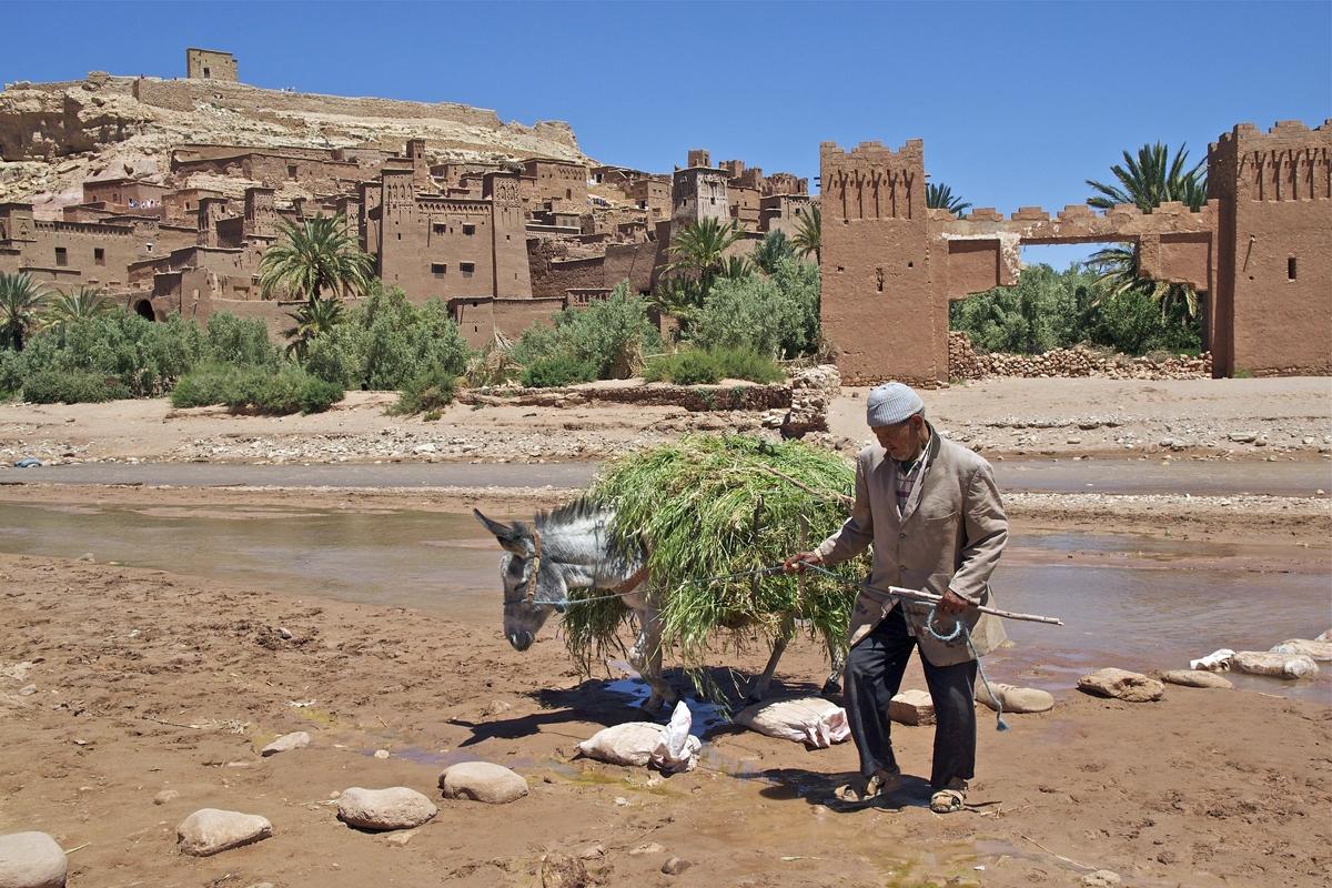 Kasbahs Marokko reis